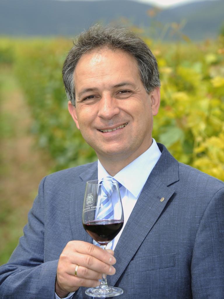 10.06.11 Das Weingut Werner Anselmann in Edesheim in der Pfalz bietet mit seinen Weinen hohe Qualitaet wird immer wieder bei Verkostungen mit den hoechsten Auszeichnungen geehrt, hier Mitinhaber Ralf Anselmann in dein Weinbergen